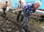 Харьковские аграрии задолжали кредиторам без малого 900 млн. грн.
