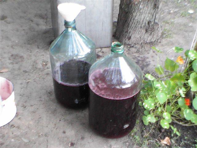 Домашє вино